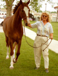 "Robyn Walker with Champion Hackney horse ""Louie"""