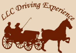 "Logo for ""The Loula Long Combs Driving Experience"""